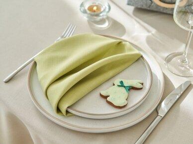 Atspari dėmėms staltiesė LOFT, garstyčių spalvos 3