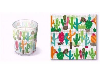 """Kvepianti žvakė """"Cactus garden"""""""