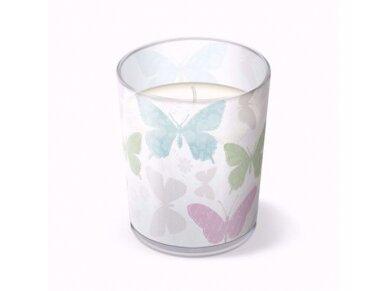 "Kvepianti žvakė ""Soft butterflies"" 2"