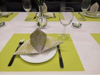 Padėkliukas salotinis plėšomas Airlaid, lime 2