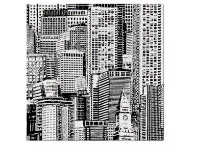 """Servetėlės """"Vaizdas į miestą"""" Airlaid, """"City view"""""""