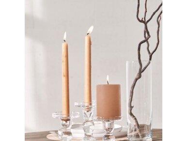 Žvakė plona ilga 30 cm rusva 2