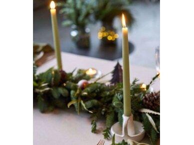 Žvakė plona ilga 30 cm samaninė 3